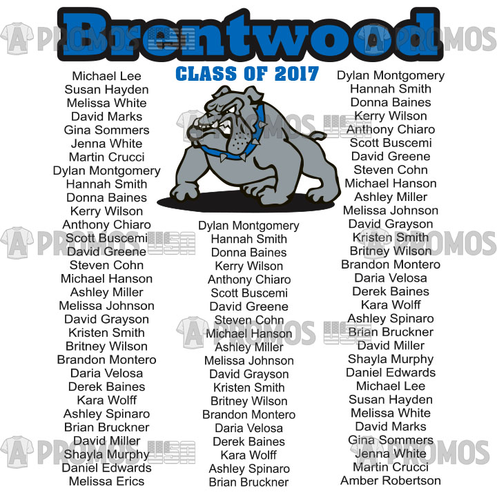 school and team fundraiser class shirt spiritwear class of graduation signature mascot middle school high hoodies hoody tees t-shirt tshirt teeshirt caps theme logo screen printing and embroidery